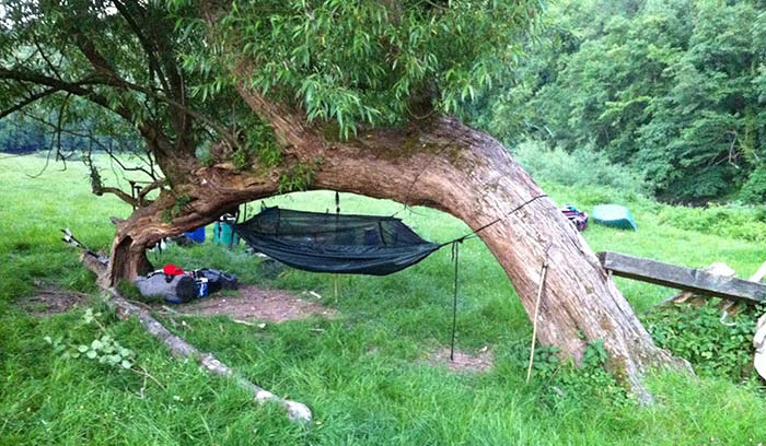 Paul Carter's one tree hammock