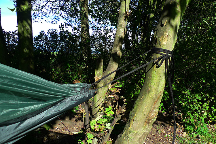 DD Strong webbing used as hammock suspension