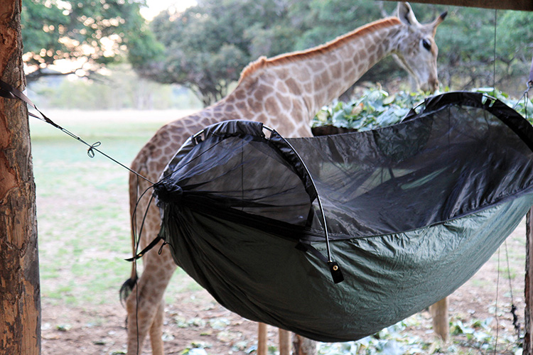 DD SuperLight Jungle Hammock on safari with giraffe