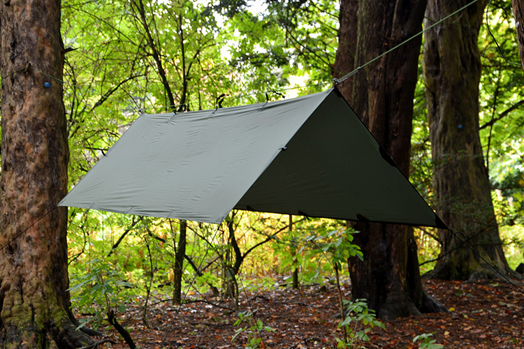 DD Superlight Tarp S set up in the woods