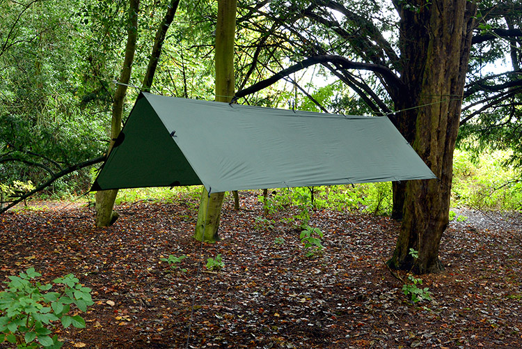 DD Superlight Tarp S set up as an a-frame in the woods