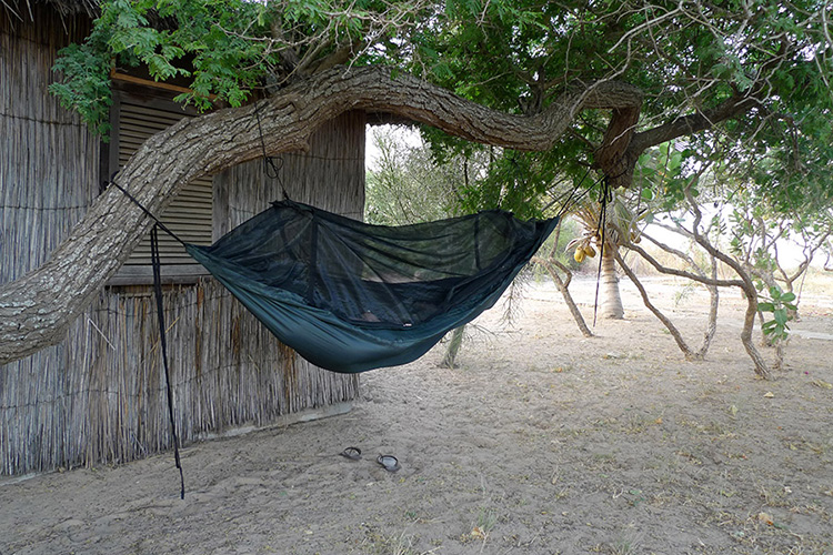 DD Frontline Hammock on a tree by a hut