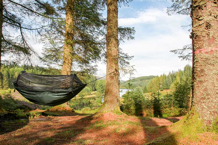 DD XL Frontline Hammock set-up in the woods near loch