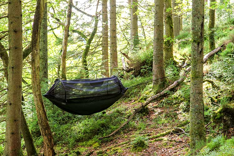 DD XL Frontline Hammock set-up in the woods