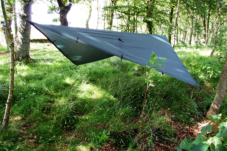 Diamond set-up of the DD Tarp 3x3 in the woods