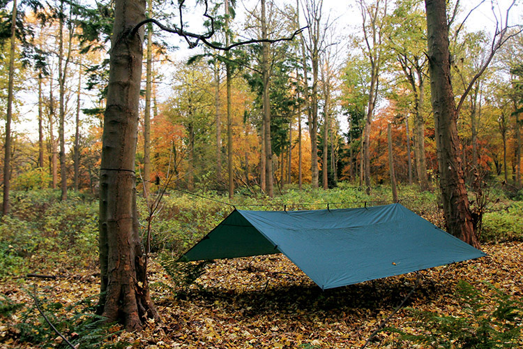 DD Tarp 4x4 green set up as a spacious shelter outdoors
