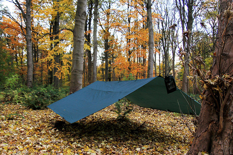 DD Tarp 4x4 green set up as a spacious shelter in the woods