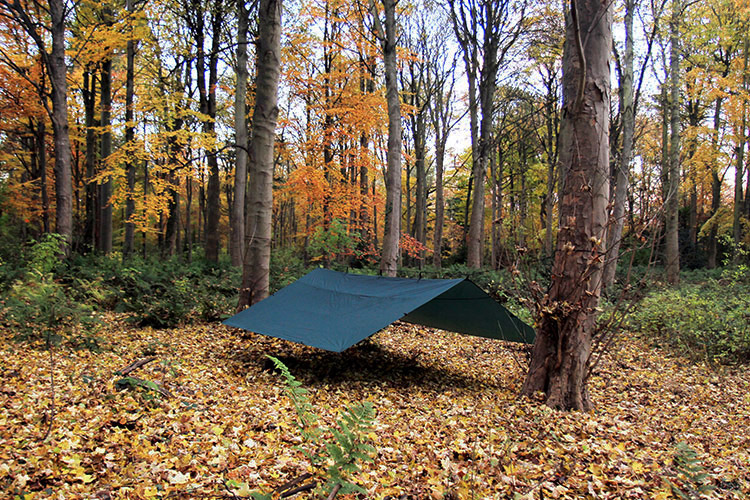 DD Tarp 4x4 green set up as a large group shelter in the woods